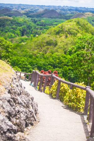 Chocolate Hills in Bohol in Philippines photo