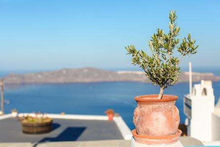 vase plaster: Large ceramic with plant greek island scene on Santorini Stock Photo