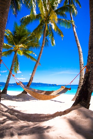 tropical tree: Straw hammock on tropical white sandy beach
