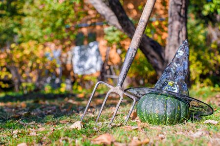 cucurbit: View of Halloween Pumpkins, witchs hat and rake outdoor Stock Photo