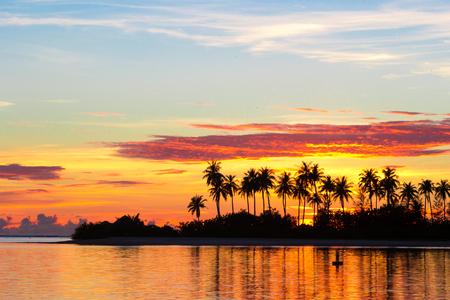 arbol: Puesta del sol en la orilla del mar con las siluetas oscuras de palmeras y cielo nublado increíble