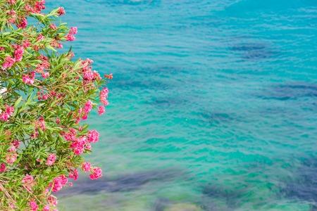 Typical greek traditional view on Mykonos Island, in Greece