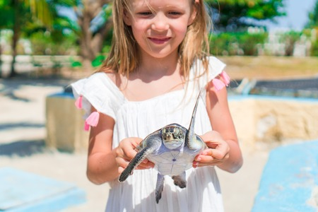 Little adorable girl with a small turtle in her hands in the reserve Stock Photo