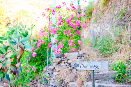 Het azuurblauwe pad is het meest eenvoudige, het beroemdste en meest bezochte parcours in de hele Cinque Terre