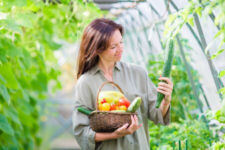 Young woman with basket of greenery and vegetables in the greenhouse. Harvesting time Stock Photo