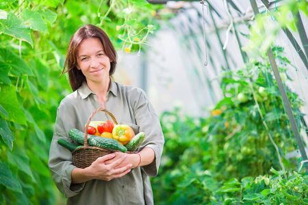 stockmarket: Young woman with basket of greenery and vegetables in the greenhouse. Harvesting time Stock Photo