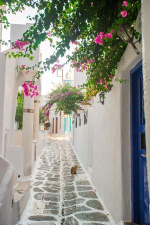 Traditional greek village. Streets and houses 版權商用圖片
