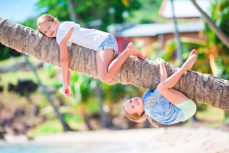 Adorable little girls at tropical beach having fun on palm tree during summer vacation. Kids enjoy their vacation like monkeys Stock Photo