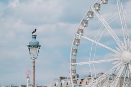 Ferris wheel Roue de Paris on the Place de la Concorde from Tuileries Garden Stock Photo