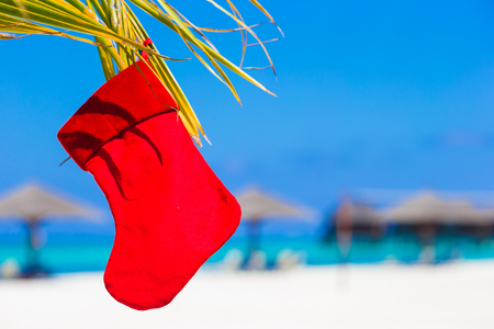 Red Santa hat and Christmas stocking between palm trees Reklamní fotografie