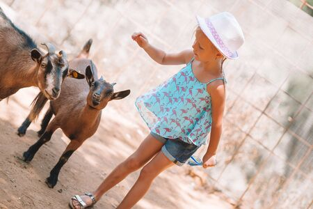 Little girl in the zoo with a small cute goat