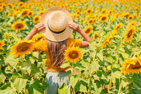 Young girl enjoying nature on the field of sunflowers. 版權商用圖片