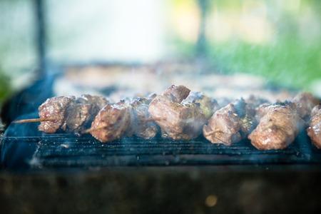 Barbecue Grill pork kebab kebab lamb meat kebab pickled caucasian barbecue meat kebab shish kebab outdoors picnic, soft selective approach, soaring smoke, blurred background