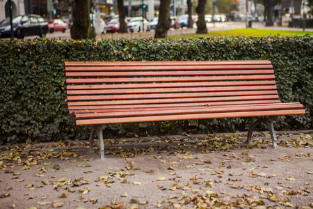 beautiful bench in the park Stock Photo