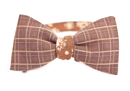 brown bow tie in cell and lines in front of white background Stock Photo