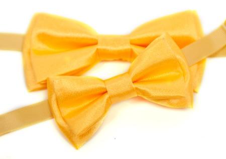 Golden yellow satin Bow Tie for Kids Children Men Man women on white background golden bowl