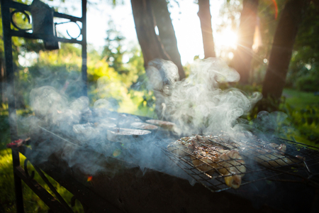 Preparation of marinated chicken or fish, cooking chicken meat on a metal brazier, close-up. Smoke leaves the chicken, in the forest