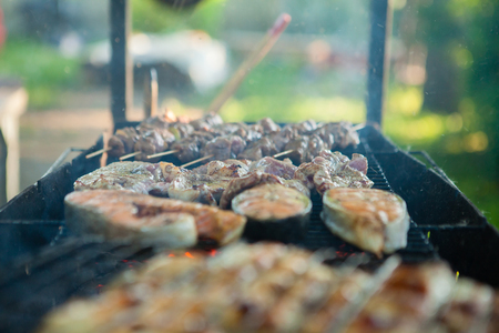 Close up of the barbecue grill at a party with barbecue in the countryside during holidays, a meat mix, several slices of fish on a barbecue grill