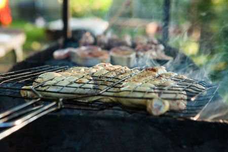 grilling time grill garden green grass and good weather Imagens