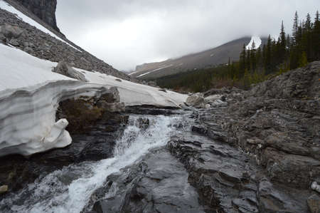 mountain creek Zdjęcie Seryjne - 29353040