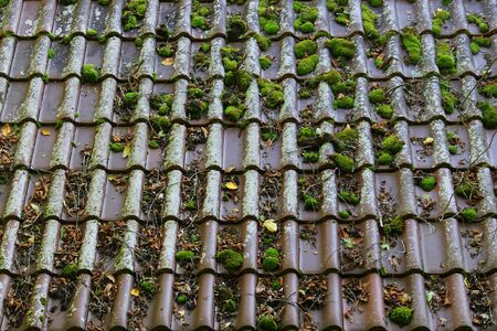 Roof tiles with moss, leaves and twigs on it