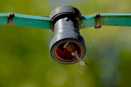 Close up of a dirty old broken light bulb hanging on a light chain in a park, bokeh Stockfoto