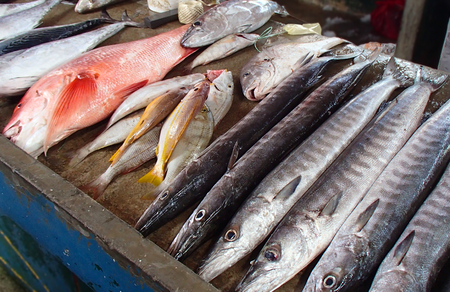 Various fresh and small fish at the Indian Ocean on a Seychelles stall