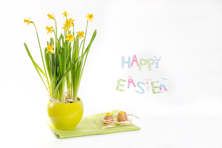 Easter decoration idea  - daffodil flowers, egg -shells and chickens