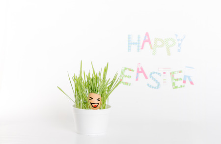eggshell: Easter decoration made of grass and egg-shell face with hair Stock Photo