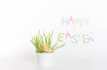 Easter decoration made of grass, egg-shell and chicken