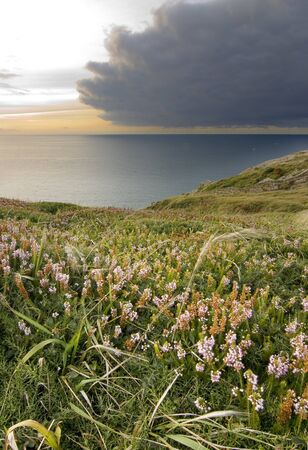 bonita imagen de un paisaje natural marino  Foto de archivo - 1719673