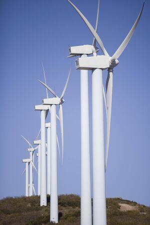 wind turbines renewable power over a blue sky