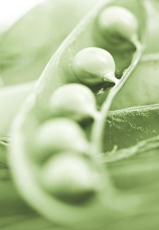 sheath: peas in the sheath with a narrow depth of field