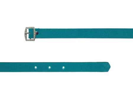 accesory: fashion accesory color fabric strap with metal buckle Stock Photo