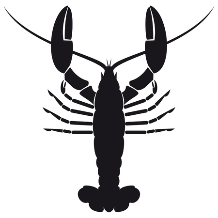 Silhouette shrimp
