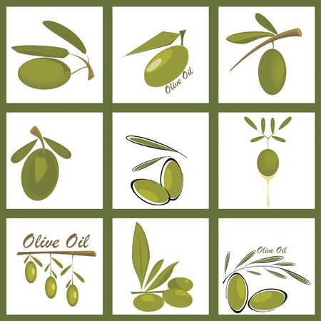 Collection, of olive icons Vector