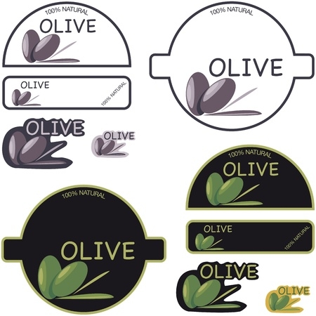Composition of tags for the olive Vector