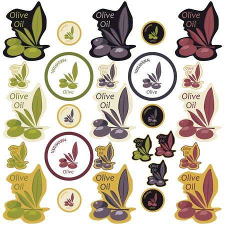 antioxidant: Olive Oil Labels Illustration
