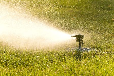 An oscillating lawn sprinkler soaks the lawn on a warm summer day. Banco de Imagens