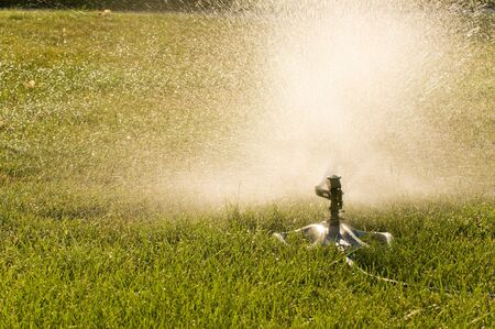 soaks: An oscillating lawn sprinkler soaks the lawn on a hot summer day.