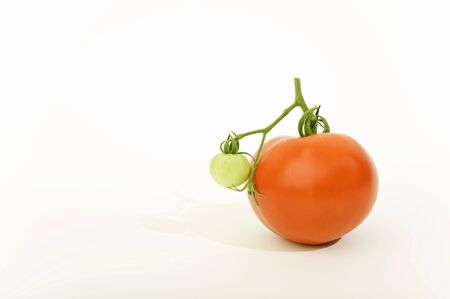 A ripe red tomato and a small unripe green tomato attached.