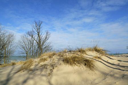Morning sunlight illuminates the sand dunes along the south shore of lake Michigan. Stock Photo