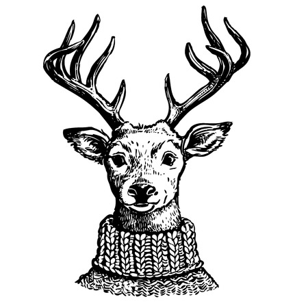 Hand drawn pen and ink vector drawing of a reindeer head. Funny hipster vintage style portrait illustration of a deer dressed in knitted turtleneck sweater, isolated on white background. Ilustração