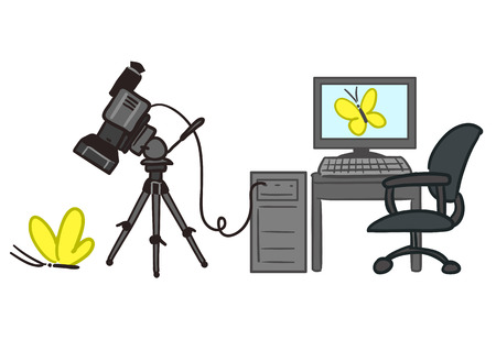 taking video: Vector hand drawn cartoon illustration of video rendering process with video camera tethered to PC, taking video of a butterfly and the video being displayed on computer screen
