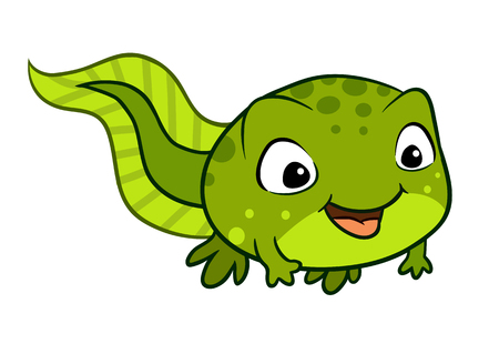 Vector cartoon illustration of a cute happy smiling bright green baby tadpole froglet pollywog character, isolated on white Illustration