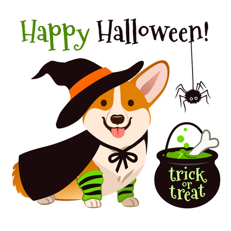 Halloween corgi puppy dog wearing witch costume with black hat and cape, cauldron brewing bubbling green potion vector cartoon illustration isolated on white. Funny cute pet Happy Halloween theme.
