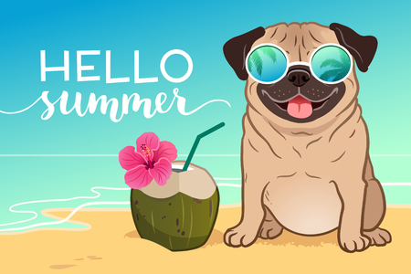 Pug dog wearing reflective sunglasses on a sandy beach, ocean in background, green coconut drink, Hello Summer text. Funny humorous lifestyle, tropical vacation, summer holidays, warm weather theme. 矢量图像