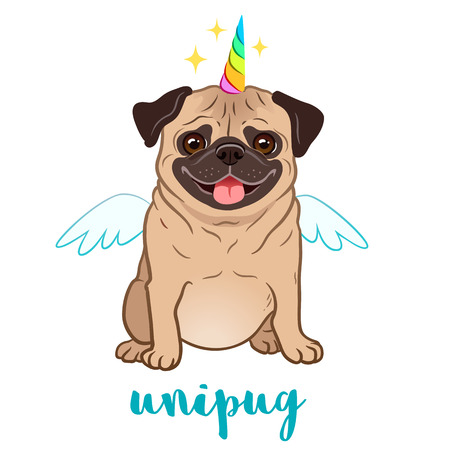 Unicorn pug dog with horn and wings vector cartoon illustration. Cute funny chubby unipug puppy smiling with tongue out, isolated on white. Humorous, magic, mythical creatures, believe in yourself. Illustration