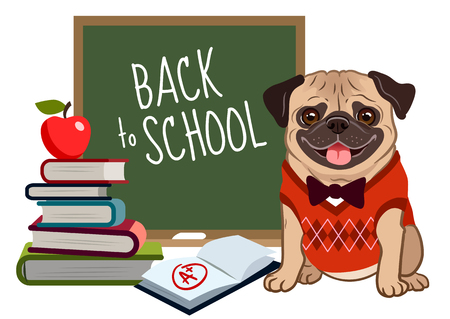 Pug dog back to school cartoon illustration. Cute friendly pug puppy, smiling with tongue out, wearing argyle vest and bow tie, near blackboard, stack of books, textbook with a plus mark, apple. 矢量图像