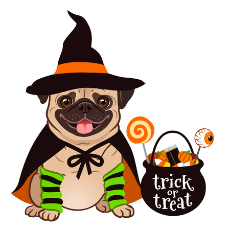 Halloween pug dog vector cartoon illustration. Cute chubby sitting pug puppy in witch costume with black hat and cape, cauldron trick or treat bucket filled with candy. Funny Halloween for pets theme.